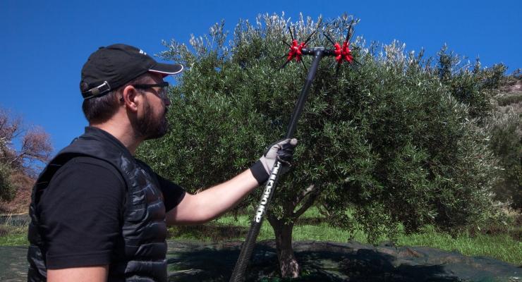 agrotechnic cogli olive xquattro supervelove